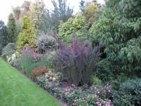 Au fil des années et de l'enrichissement de leur gamme, Joanna et Bronisław Szmit ont aménagé un jardin de démonstration de 2,5 ha.