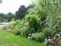 Les massifs autour de l'école d'Agrocampus Ouest à Angers (49) permettent de tester de nombreuses nouveautés. Ils servent également de base de reconnaissance pour les élèves ingénieurs en horticulture et paysage.
