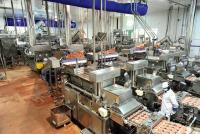 1. Lignes de production – Après les travaux, l'usine McKey est passée de sept lignes de production à cinq, tout en gardant le même tonnage. Chaque ligne (mélangeur, formeuse, peseuse) transforme, toutes les heures, 3 tonnes de viande. 44.000 tonnes de steaks hachés sont ainsi produites par an. Photos : Cédric Faimali
