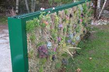 la cl ture devient mur v g tal bipalis jardin vertical nouveaut s le lien horticole le. Black Bedroom Furniture Sets. Home Design Ideas