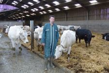 Bleue du Nord et Holstein, un troupeau aux qualités extrêmes (©AM)