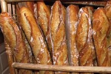 Baguettes de tradition (Photo : latoque.fr)