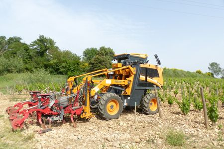 Viticulture oenologie viticulture le permis b suffit for Permis agricole
