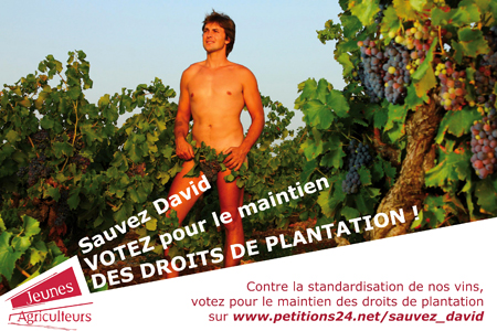 Droits de plantation : les JA pétitionnent en costume d'Adam.